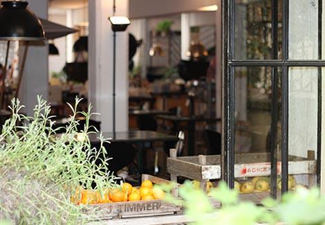 מרסי תפוזים בחלון