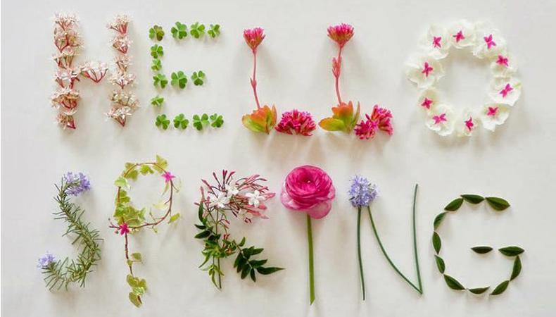 hallo spring מותאם