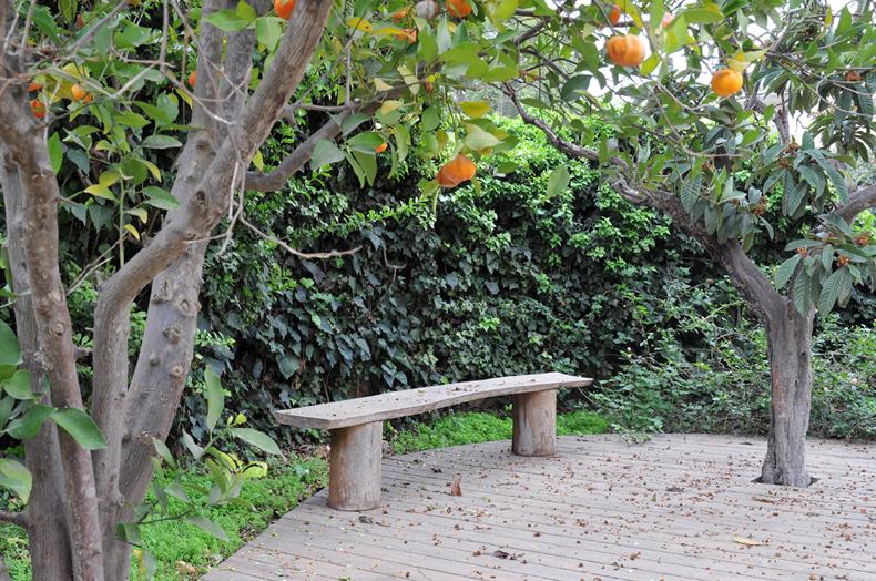 19 ספסל בגינה