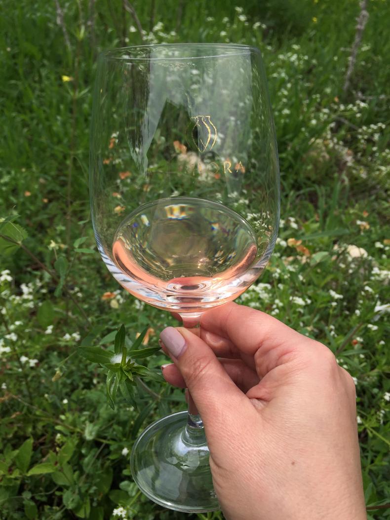 כוס יין ורוד
